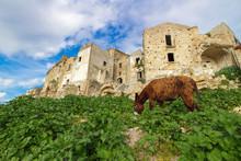 イタリア、マテーラ、クラーコの廃墟