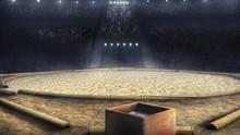Sumo Professional Arena In Lig...