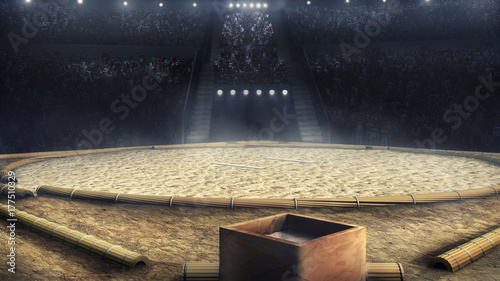 sumo professional arena in lights 3d rendering Fototapet