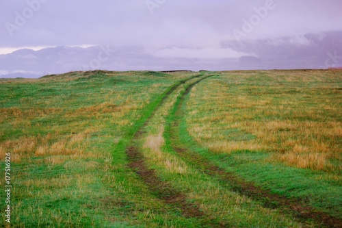 Poster Purper road in field