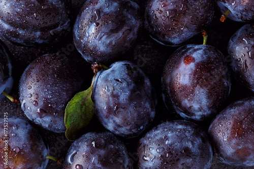 Close up of plum on dark.