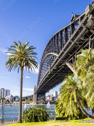the iron bridge in Sydney viewed from the Rock quarter © marinzolich