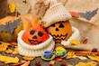 Halloween. a cheerful Halloween pumpkin among the leaves.