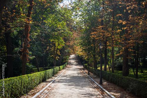 Parc du Retiro à l'automne, Madrid, Espagne