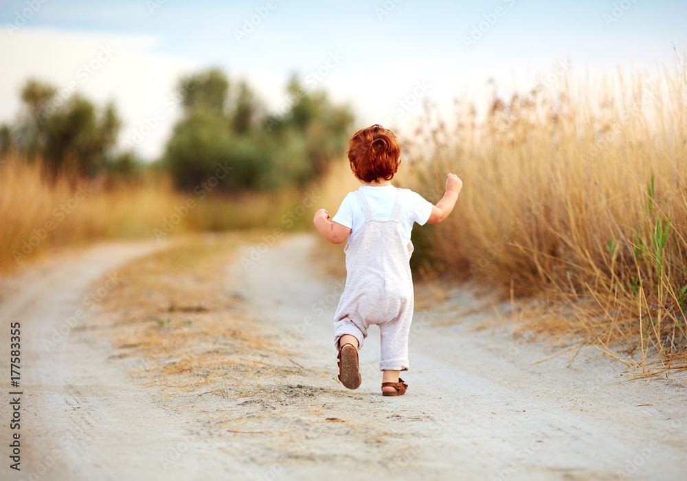 Fototapeta cute toddler baby boy running away along the path at summer field