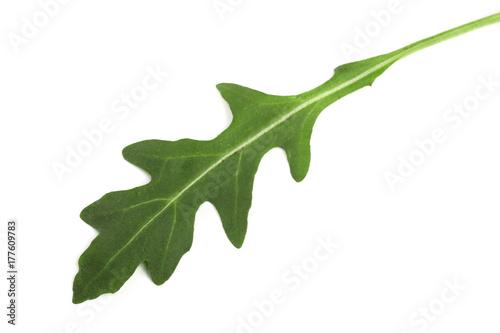 Green fresh rucola or arugula leaf isolated on white background Wallpaper Mural