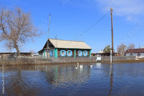 Plakat Wiejski stary dom wśród meltwater na Syberii