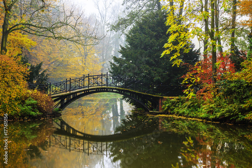 Plakaty do salonu  scenic-view-of-misty-autumn-landscape-with-beautiful-old-bridge-in-the-garden-with-red-maple