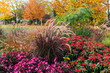 canvas print picture - A piece of garden in autumn