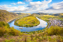 Calmont Moselle Loop Landscape In  Autumn Colors Travel Germany