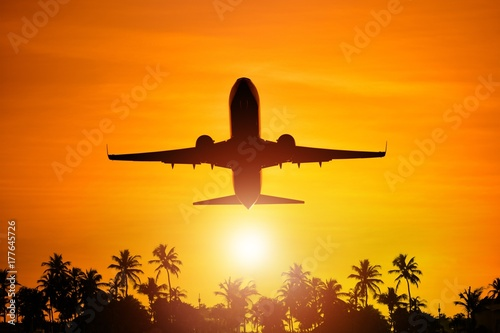 Fotografie, Obraz  Airplane Flight To Paradise