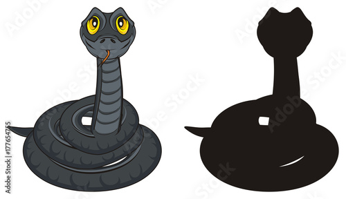 Photo  snake, coldblooded, poison, bite, teeth, reptile, tongue, terrarium, long, cold,