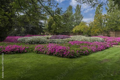 Fotografia, Obraz  Parque de El Capricho (Madrid)
