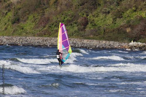Plakat surfer windsurfer an der ostsee