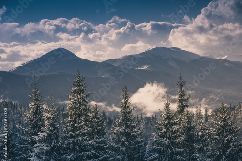 Landscape in winter mountains.View of foresty hills covered by snow. Old photo style.