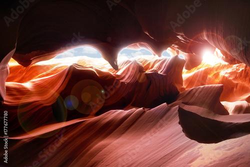 Canvas Prints Antelope Scenic canyon Antelope