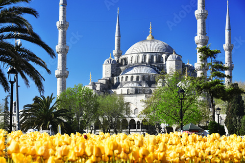 Sultan Ahmed Mosque or Blue Mosque in Istanbul, Turkey Poster