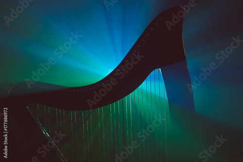 Fotografie, Tablou Electro harp in the rays of light
