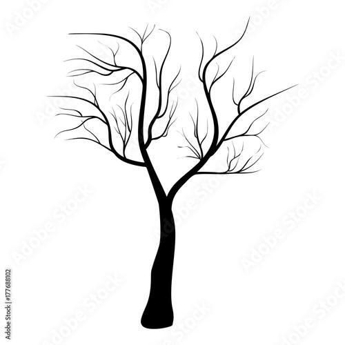 nagie-drzewo-ikona-symbol-projektu-wektorowa-ilustracja-odizolowywajaca-na-bialym-tle-drzewo-czarnej-sylwetki-nagi-drzewo-dla-zimy-lub-halloween-skladu