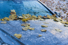 Autumn Leaves On A Car Covered...