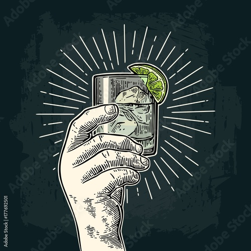 Fototapeta Male hand holding a glass with gin. Vintage vector engraving
