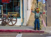 Halloween Scarecrow Outside Ol...