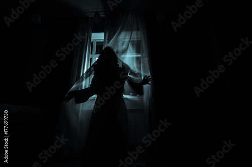 Obraz Horror woman in window wood hand hold cage scary scene halloween concept Blurred silhouette of witch. Selective focus - fototapety do salonu