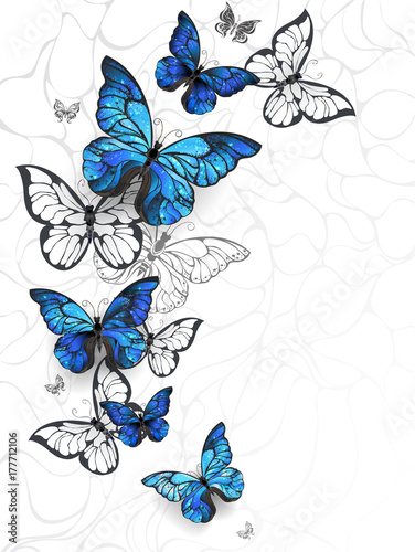Flying butterflies morpho Canvas-taulu