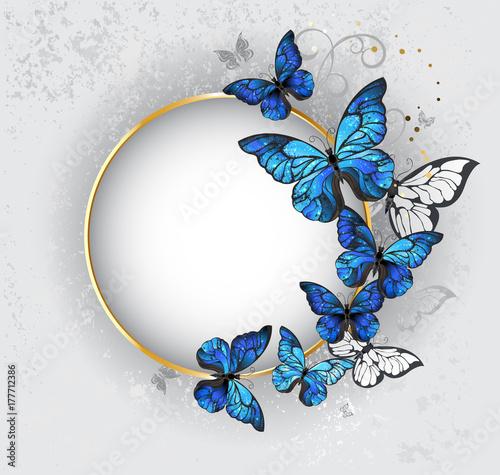 Fotografie, Obraz  Round banner with blue butterflies morpho