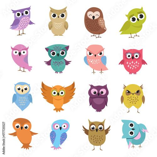 Photo Stands Owls cartoon Cute cartoon owls. Funny forest birds vector collection