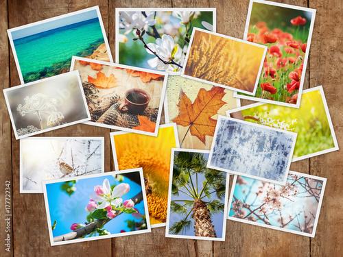 Plakat Kolaż zdjęć to pory roku. Selektywna ostrość.