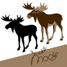 Moose Vector Illustration Fla...
