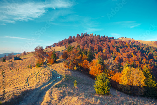 Keuken foto achterwand Turkoois Colorful autumn landscape in the mountain village. Foggy morning in the Carpathian mountains. Sokilsky ridge, Ukraine, Europe.