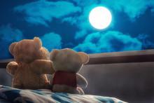 Teddy Bear In Moonlight In Rom...