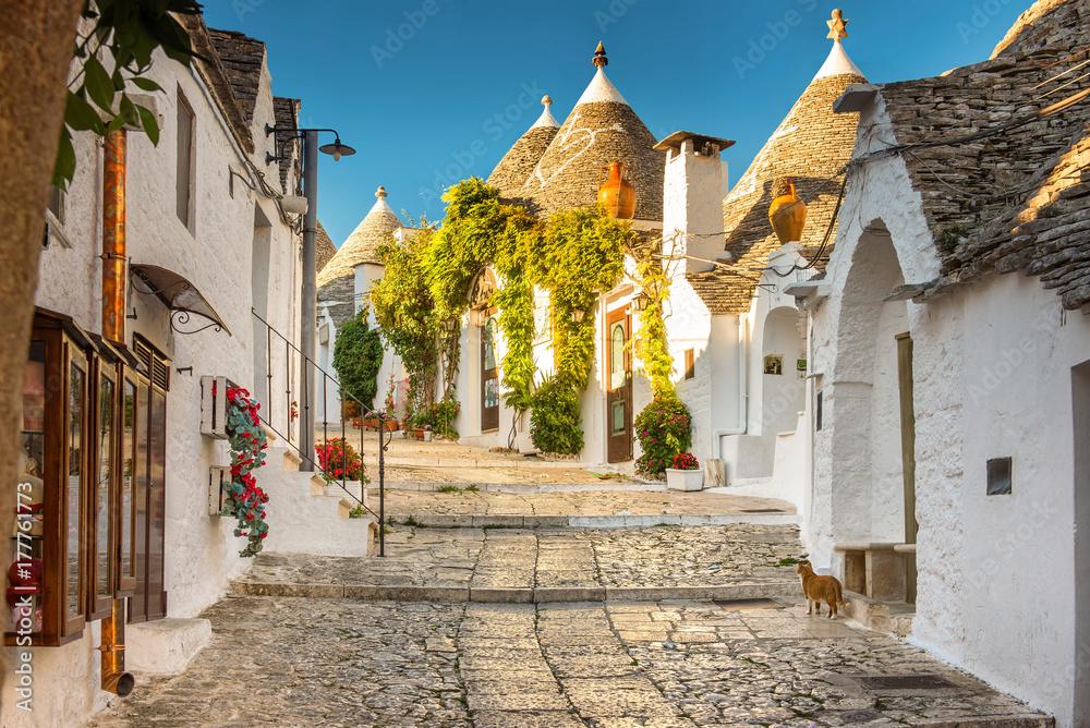 Fototapety, obrazy: Alberobello Trulli Church, Apulia, Puglia, Italy