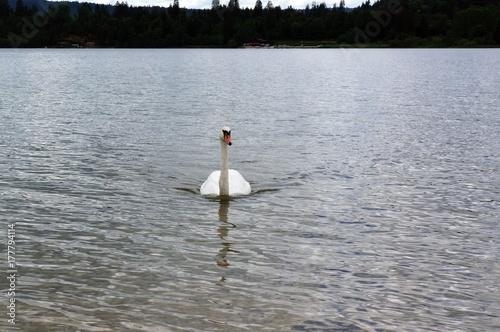 Zdjęcie XXL Piękne krajobrazy