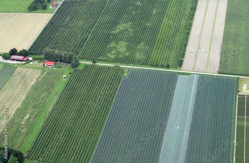 Fotodibond 3D Widok z lotu ptaka jabłczany sad w południowym Niemcy