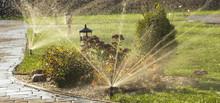 A Rotating Sprinkler Spraying ...