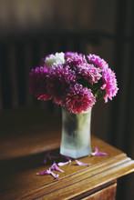 Pink Summer Flowers In Vase