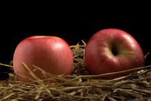Apple. Straw. On Wood. Black B...