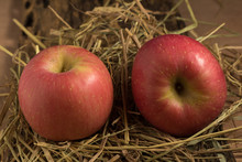 Apple. Straw. On Wood
