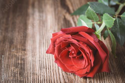 Spoed Fotobehang Rood, zwart, wit Single red rose on wooden background