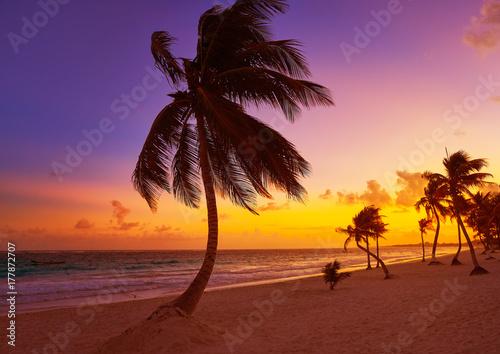 Foto op Aluminium Rudnes Tulum beach sunset palm tree Riviera Maya