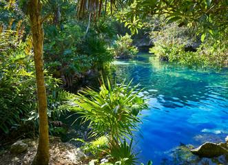 Panel Szklany Eko Cenote in Riviera Maya of Mayan Mexico
