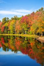 Colorful Foliage Reflections I...