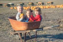 Happy Kids Sitting Inside Wheelbarrow At Field Pumpkin Patch