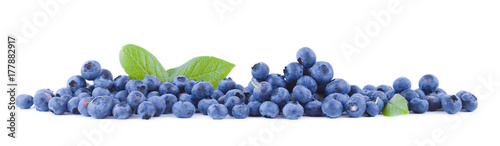 Fresh blueberries panoramic Canvas Print