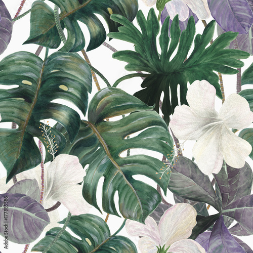 Akwarela bezszwowe tropikalny wzór z egzotycznymi roślinami. Liście palmowe i deliciosa. Dżungla.
