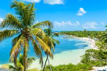 Bahia Honda State Park - Calus...