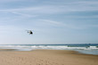Helicopter flies along a beach